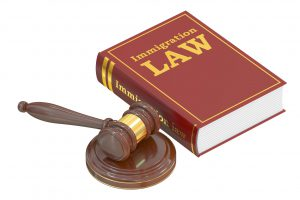 58541952 - immigration law concept with gavel. 3d rendering